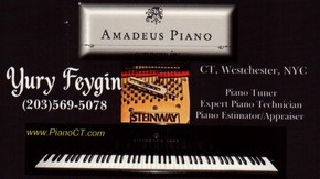 Click to see Amadeus Piano Details